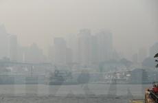 Australia: Sydney đối mặt tình trạng khẩn cấp y tế do khói mù