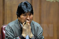 Ông Evo Morales: Cấm đảng MAS tranh cử sẽ là sai lầm nghiêm trọng