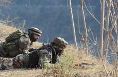 Đấu súng giữa binh sỹ Ấn Độ và Pakistan, nhiều người thương vong