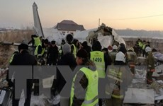 Rơi máy bay ở Kazakhstan: Những người liên quan sẽ bị trừng phạt