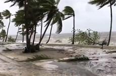 Bão nhiệt đới Sarai càn quét Fiji, gây thiệt hại về người