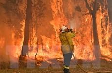 Australia: Cháy rừng diễn biến nguy hiểm trong đợt nghỉ lễ cuối năm