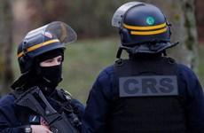 Pháp và Đức ngăn chặn thành công các vụ tấn công bằng dao