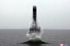 38 North: Triều Tiên có thể thử tên lửa đạn đạo phóng từ tàu ngầm