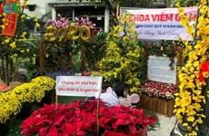 [Video] Đặc sắc đường hoa Tết đặc biệt trong Bệnh viện Chợ Rẫy