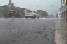 Canada: Khu vực Toronto Greater đối mặt với tình trạng lũ lụt do bão