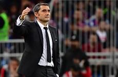 Barcelona sa thải Ernesto Valverde, bổ nhiệm Quique Setien