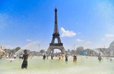 Biến đổi khí hậu: 2019 là năm nóng kỷ lục của các đại dương