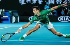 Australian Open 2020: Novak Djokovic cán mốc 900 trận thắng