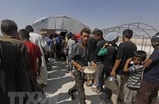 Thổ Nhĩ Kỳ cấp chứng nhận định cư cho hơn 1 triệu người tị nạn Syria