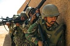 Lực lượng quân đội Afghanistan tiêu diệt 51 phiến quân Taliban