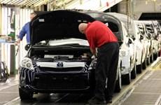 Anh: Lĩnh vực sản xuất ổn định dần do triển vọng chính trị cải thiện