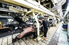 Hyundai và Kia ngừng một số dây chuyền lắp ráp do thiếu phụ tùng