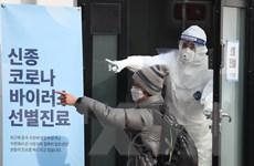 Hàn Quốc xác nhận trường hợp thứ 16 nhiễm virus corona