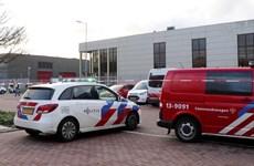 Hà Lan: Bom thư phát nổ tại văn phòng của ngân hàng ING