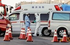 Nhật Bản sẽ sắp xếp thêm chuyến bay tới Vũ Hán để đưa công dân về nước