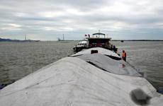 Hải Phòng: Tạm giữ 700m3 than nhiệt thấp không rõ nguồn gốc
