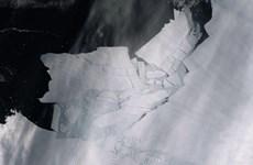 Khuyến cáo về tình trạng 'không thể đảo ngược' tại Nam Cực