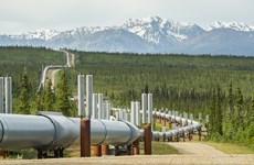 Nghị sỹ Mỹ kêu gọi không tài trợ hoạt động khoan dầu ở Bắc Cực