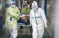 Trung Quốc: Tỉnh Hồ Bắc chỉnh sửa lại số ca nhiễm COVID-19