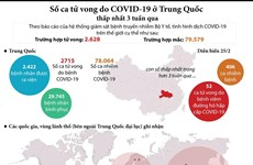 [Infographics] Số ca tử vong do COVID-19 ở Trung Quốc giảm