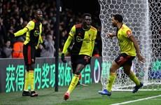 Cận cảnh Watford gây sốc bằng chiến thắng vùi dập Liverpool