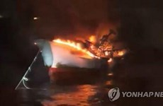 Danh tính 5 thuyền viên người Việt mất tích ngoài khơi đảo Jeju