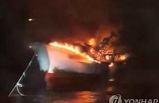 ĐSQ Việt Nam tại Hàn Quốc tiến hành bảo hộ công dân sau vụ cháy tàu cá