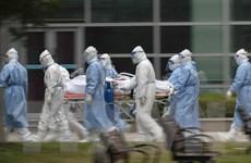 Dịch COVID-19: Số ca nhiễm mới và tử vong tại Trung Quốc giảm mạnh