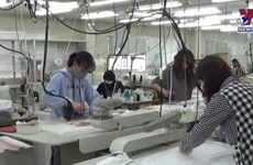 [Video] Lao động Việt ở Nhật an tâm làm việc giữa dịch COVID-19