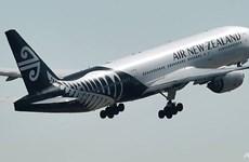 Hãng hàng không quốc gia New Zealand 'cầu cứu' chính phủ