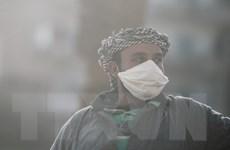 COVID-19: Ai Cập áp đặt lệnh giới nghiêm, Nam Phi tăng ca nhiễm