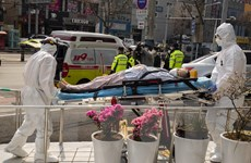 COVID-19: Hàn Quốc thêm nhiều ca nhiễm, số ca tử vong ở Brazil tăng