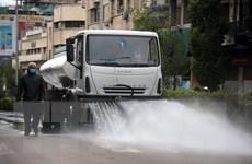 HĐBA LHQ lo ngại tác động của dịch COVID-19 tới tình hình Syria