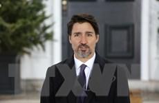 Canada đối mặt với thách thức kinh tế và y tế nghiêm trọng