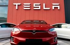 Doanh số bán xe của Tesla vẫn vượt trội trong quý 1 năm 2020