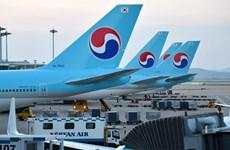 Các hãng hàng không Hàn Quốc hối thúc chính phủ hỗ trợ