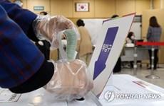 Bầu cử Hàn Quốc: Tỷ lệ cử tri tham gia bỏ phiếu sớm cao kỷ lục