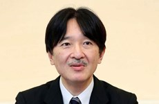 Chính phủ Nhật Bản hoãn lễ công bố người kế vị Nhật hoàng