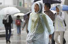 Nhật Bản: Thành phố Osaka kêu gọi quyên góp áo mưa cho các bệnh viện