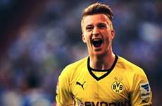 [Mega Story] Reus: Chúng tôi phải phá vỡ sự thống trị của Bayern