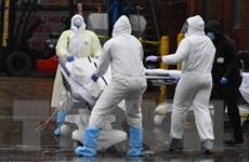 Dịch COVID-19: Mỹ tăng mạnh số người chết, Canada chịu áp lực lớn