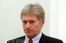 Nga: Lịch trưng cầu ý dân về hiến pháp tùy thuộc tình hình dịch bệnh