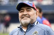 Diego Maradona bán áo đấu ủng hộ cuộc chiến chống COVID-19