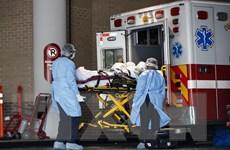 Số ca mắc dịch bệnh COVID-19 tại Mỹ vượt mốc 1 triệu người