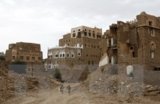 Thúc đẩy 'ngừng bắn nhân đạo' đối với các cuộc xung đột trên toàn cầu