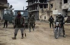 Afghanistan bắt giữ một nhánh chung của mạng lưới IS-Haqqani