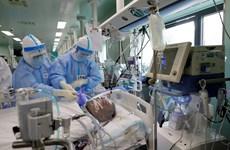 Hơn 10.000 ca tử vong ở châu Á, châu Phi có thể tới 190.000 người chết