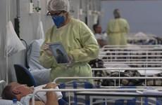 MSF: Mỹ Latinh có thể trở thành 'điểm nóng' COVID-19 tiếp theo