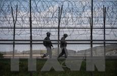 Hàn Quốc phản đối kết luận của LHQ về vụ nổ súng qua lại ở DMZ